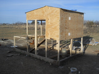 New Chicken Tractor Back & Penthouse Sections & Siding Installed