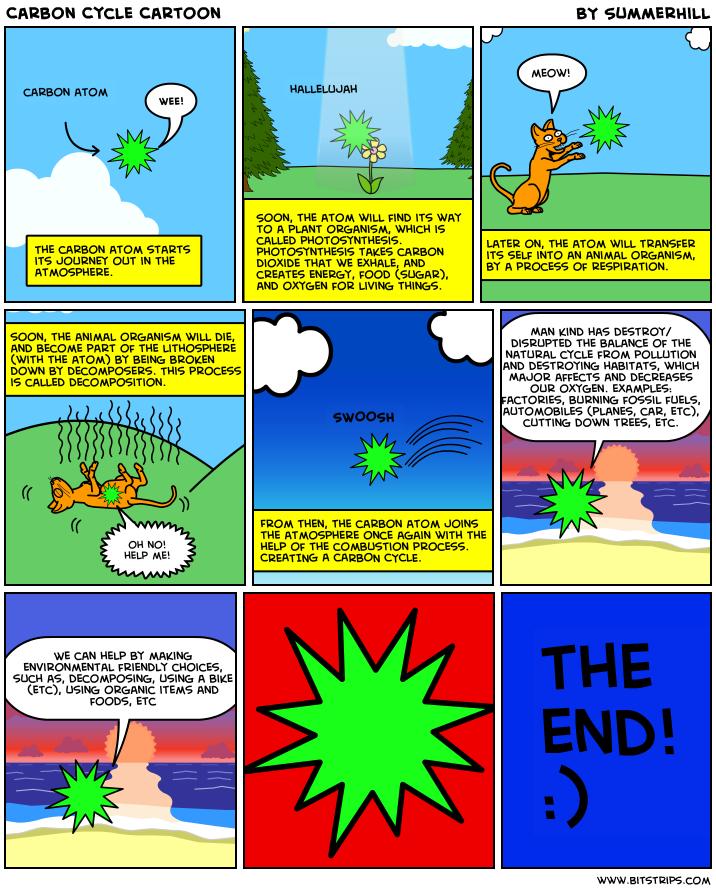 Cycles In Nature Worksheet - Nidecmege