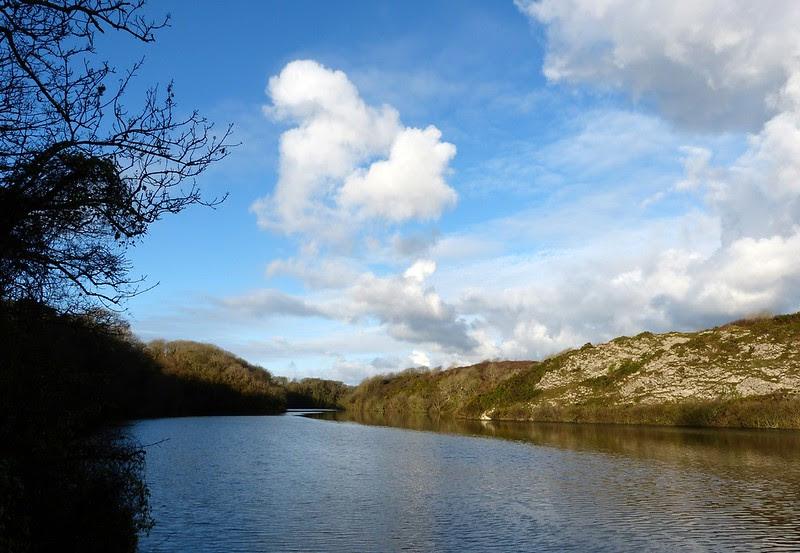 29032 - Bosherston Lily Ponds