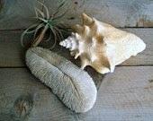 Vintage Sea Coral Speciman - 5gardenias