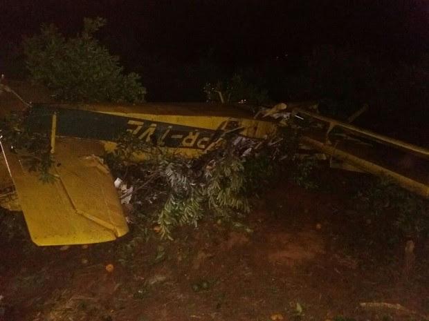Avião caiu em fazenda de Botucatu (Foto: Acontece Botucatu/Divulgação)