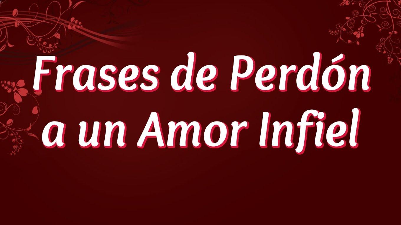 Frases De Perdon 75 Frases
