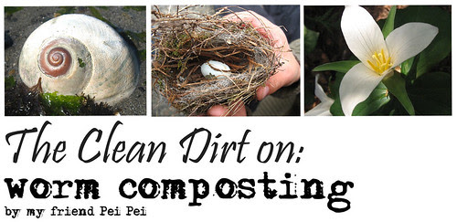 worm composting header pei pei