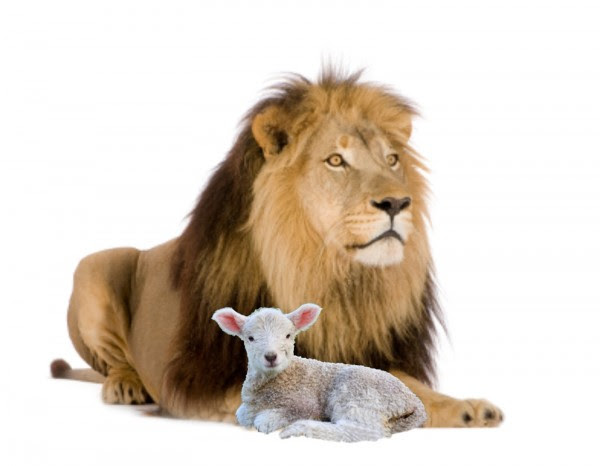 leon cordero e1413914757381
