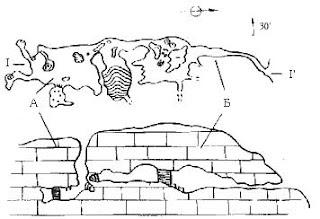 План и разрез вскрытых пещер Гугерджин (А) и Бинбаш (Б)