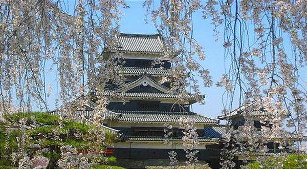 Lulusan Sastra Jepang dapat bekerja di berbagai bidang, tidak hanya menjadi guru dan penerjemah.(Foto: Japan Guide)