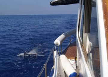 El plástico se adueña del Mediterráneo