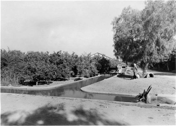 Barrage-de-l'Oued-Fergoug-Perregaux-04