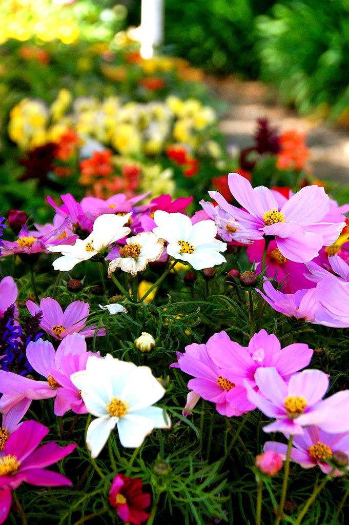 l.a. garden show