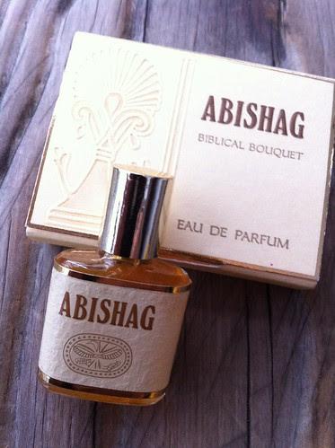 Abishag by Ayala Moriel