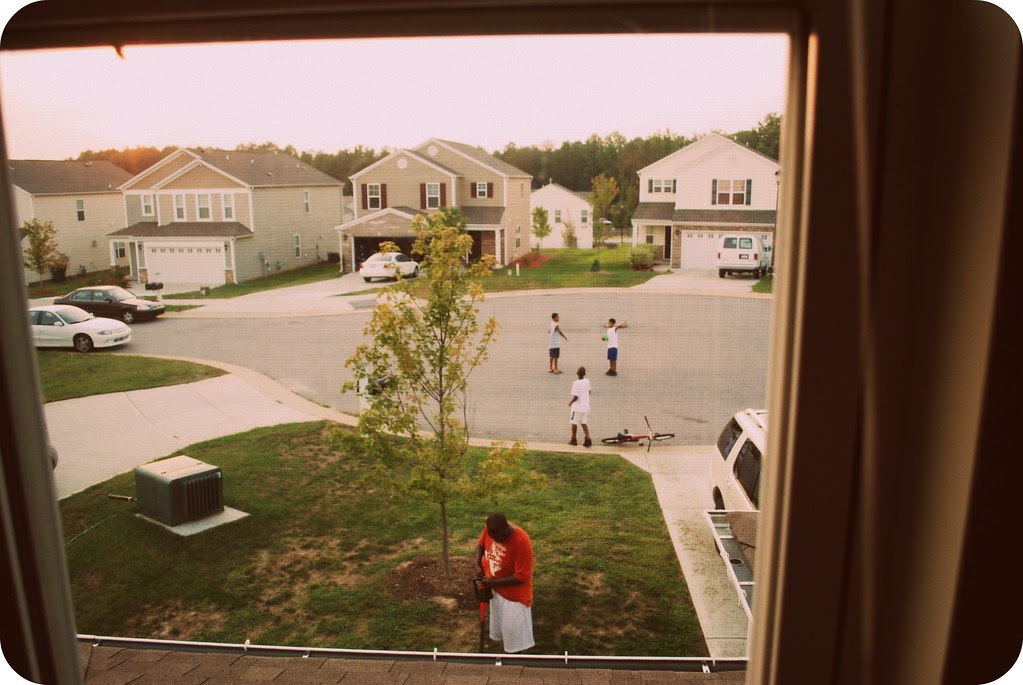 Out the laundry window