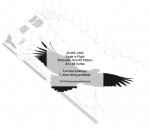 Eagle Silhouette Yard Art Woodworking Pattern - fee plans from WoodworkersWorkshop® Online Store - eagles,birds,yard art,painting wood crafts,scrollsawing patterns,drawings,plywood,plywoodworking plans,woodworkers projects,workshop blueprints