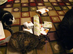 Look at all these presents