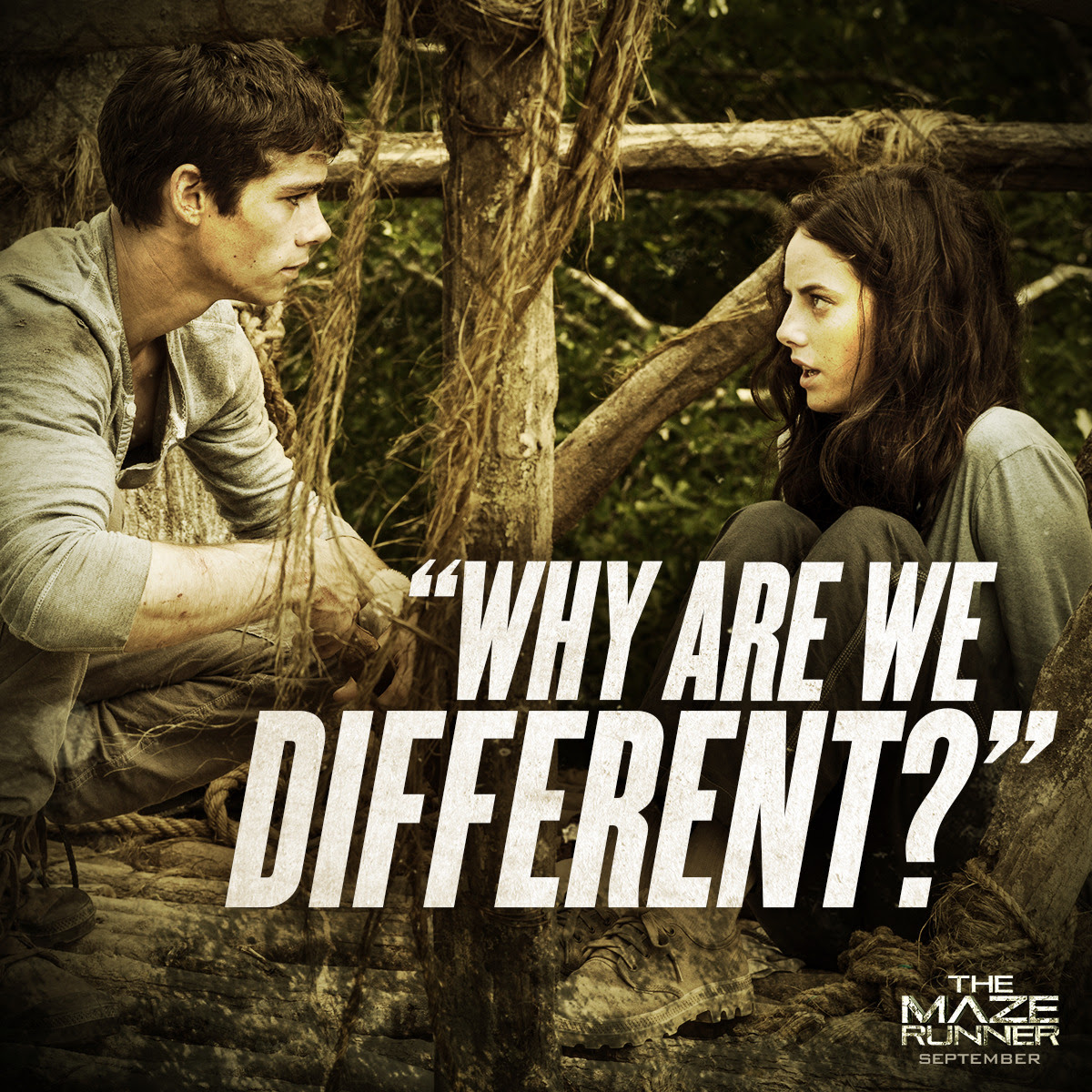 mazerunnermovie:  The answer is hidden in the things they can't remember.