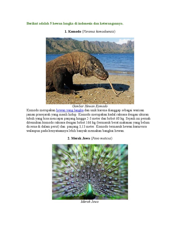 Gambar 10 Flora Fauna Langka Docx Documents 50 Contoh ...