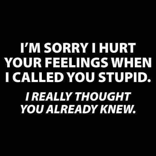 Humor Im Sorry I Hurt Your Feelings Nieuwssocial Social Media