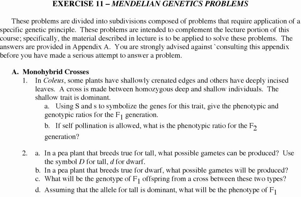 Answer Key Non Mendelian Genetics Worksheet Answers ...