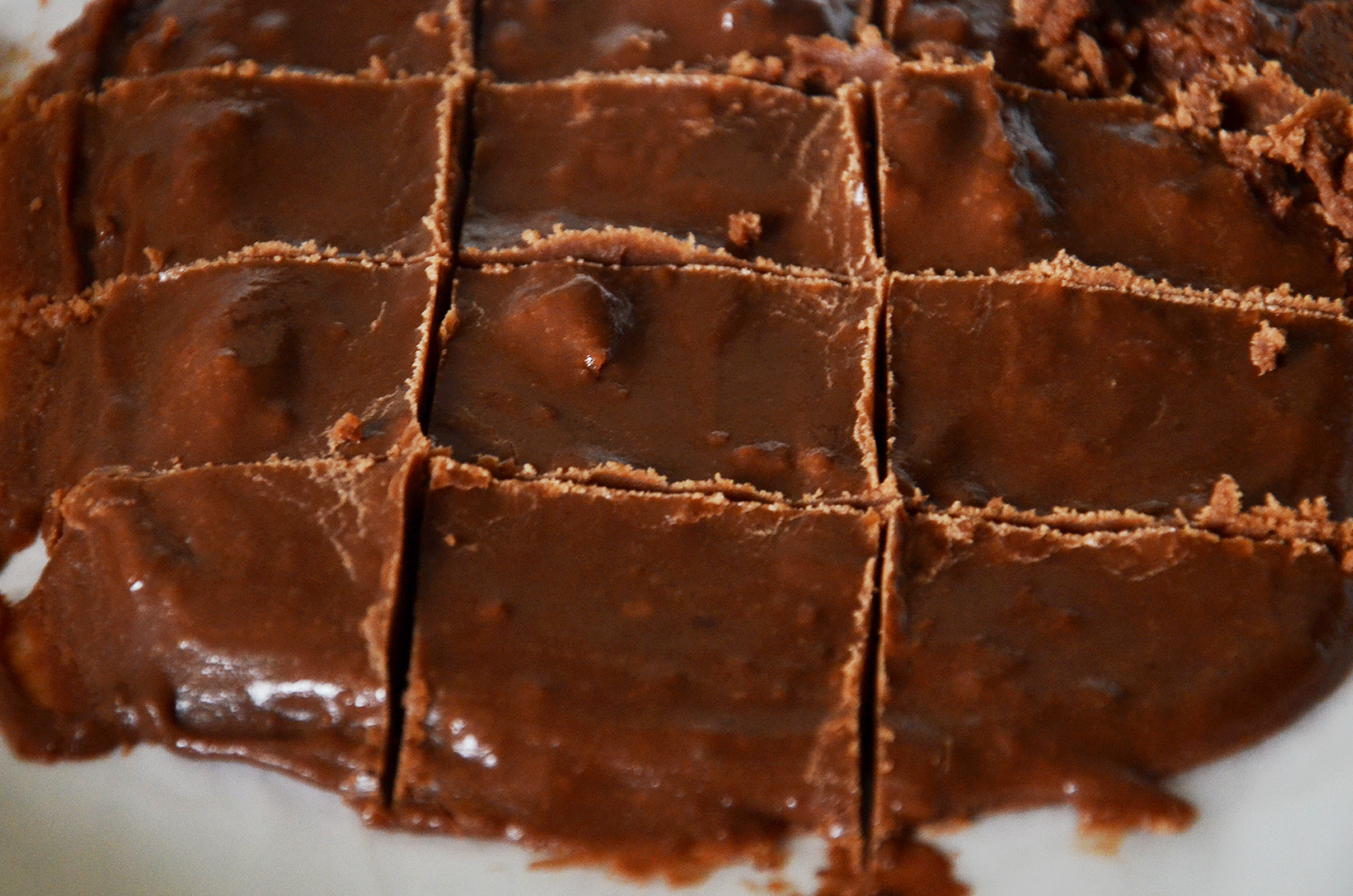 microwave fudge with cocoa powder and condensed milk