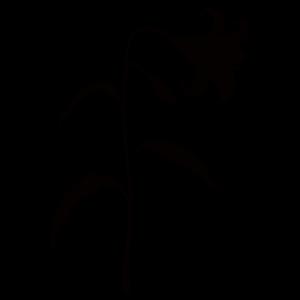 ユリの花のイラスト8 花植物イラスト Flode Illustration フロデ