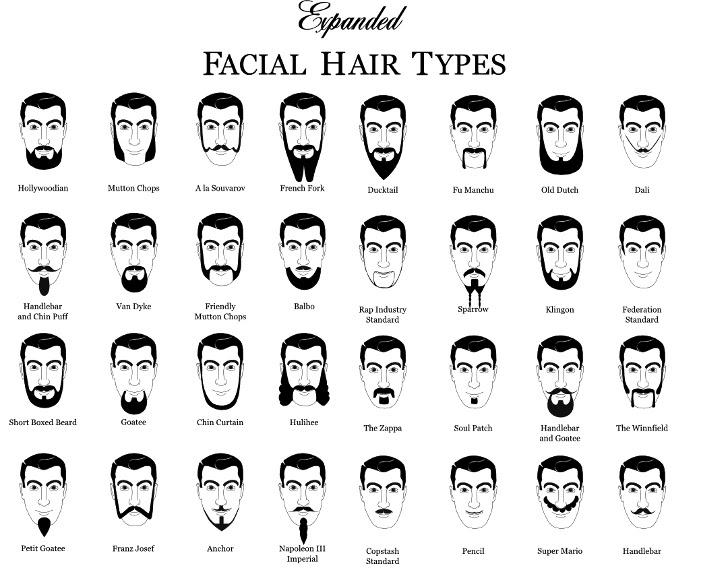 Movember Beard Styles » ChartGeek.com