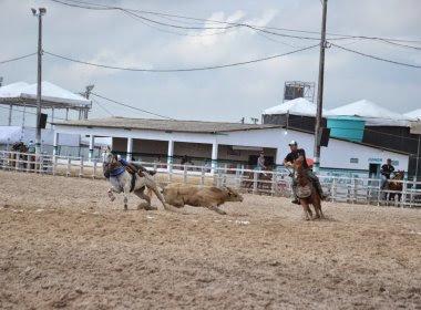 MP-BA recomenda medidas para evitar maus tratos de animais em vaquejada em Serrinha