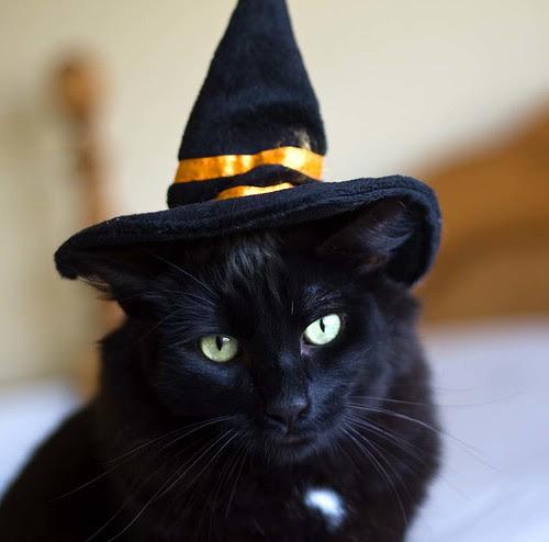 My sweet boy for Halloween