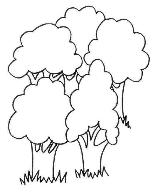 Orman Haftası Etkinlikleri 5 Okul öncesi Etkinlik Faliyetleri