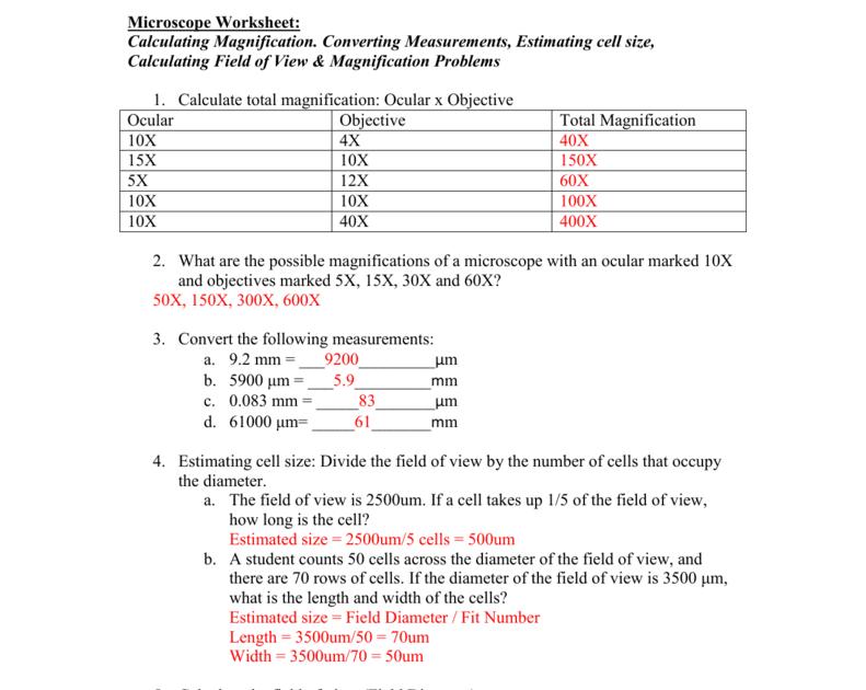 Microscopes Online Worksheet Answers - Nidecmege