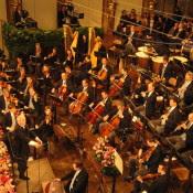 Neujahrskonzert 2014 der Wiener Philharmoniker mit Dirigent Daniel Barenboim