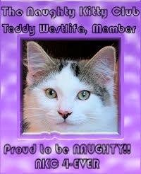 teddy westlife member