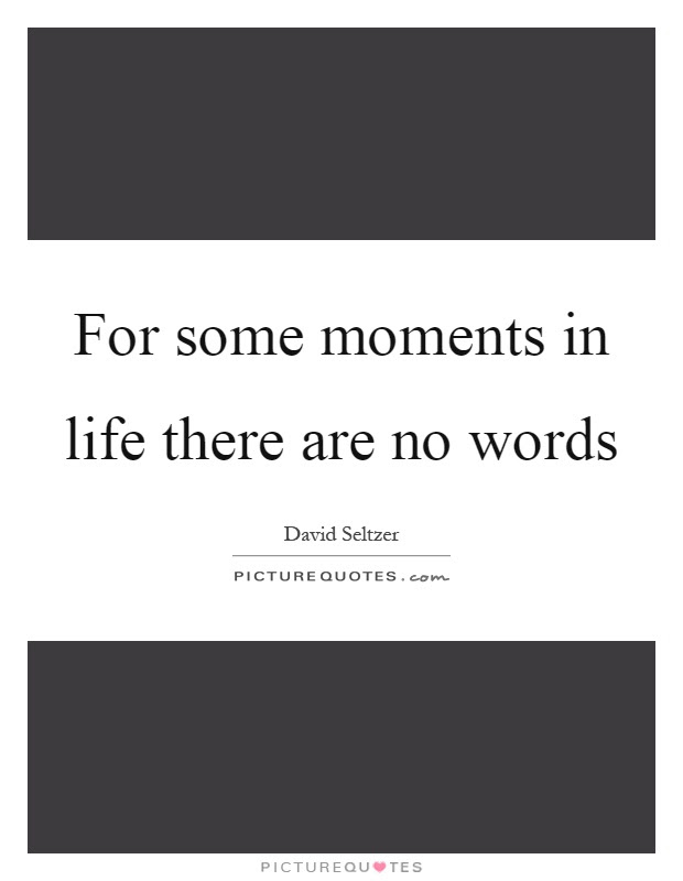 For Some Moments In Life There Are No Words Picture Quotes