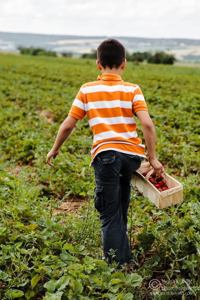 Soeren Strawberry Field (0054) by Meeta K. Wolff