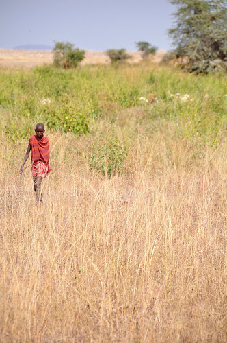 Masaiboyinthe fields