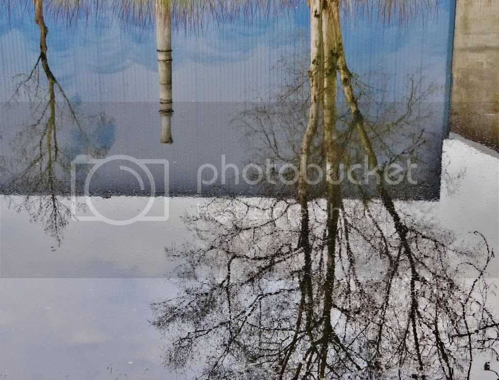 photo a1_zps861f699a.jpg