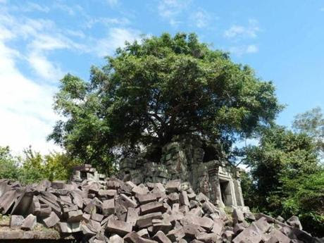 Beng Mealea is a precursor to the temples throughout the Angkor Wat complex.