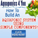 Aquaponics 4 You