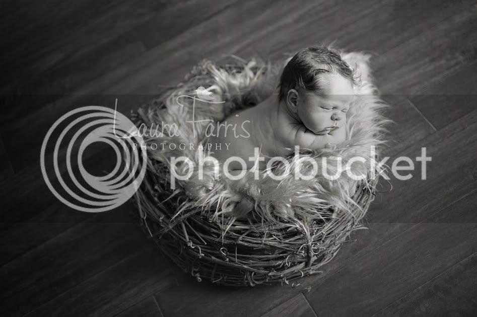 Boise newborn photographer