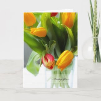 Beautiful, spring tulips in a glass vase, greeting card
