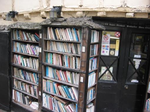 ageing bookshelves in lewes