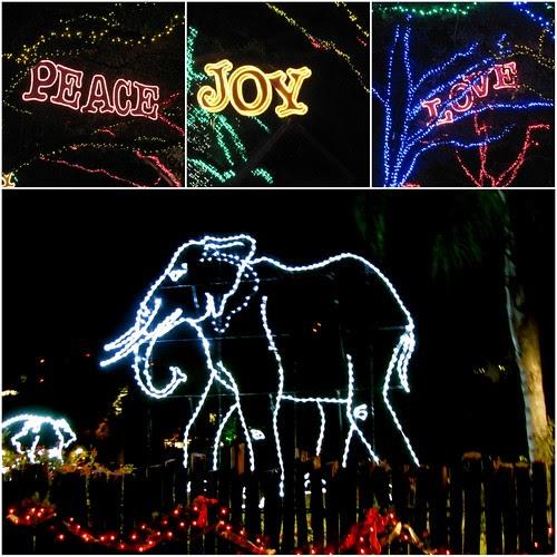 Tales From Twisty Lane: Zoo Lights