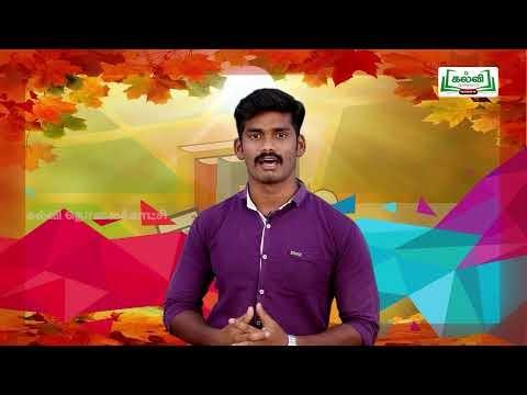 8th Social Science வர்த்தகத்திலிருந்து பேரரசு அலகு 2  Kalvi TV