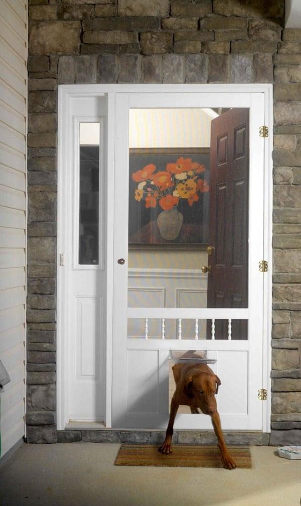 doggie door design ideas  | 736 x 981