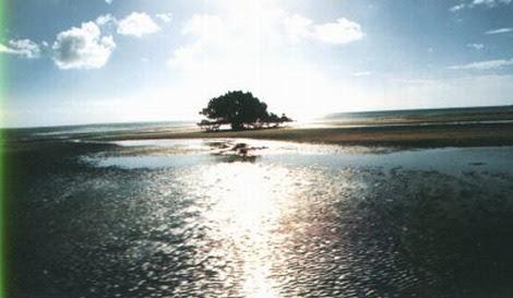 ILHA BAZARUTO - por de sol9797_resize.jpg