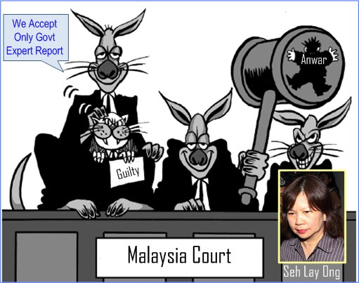 Anwar Sodomy Busted - Selective Recognition Of Reports