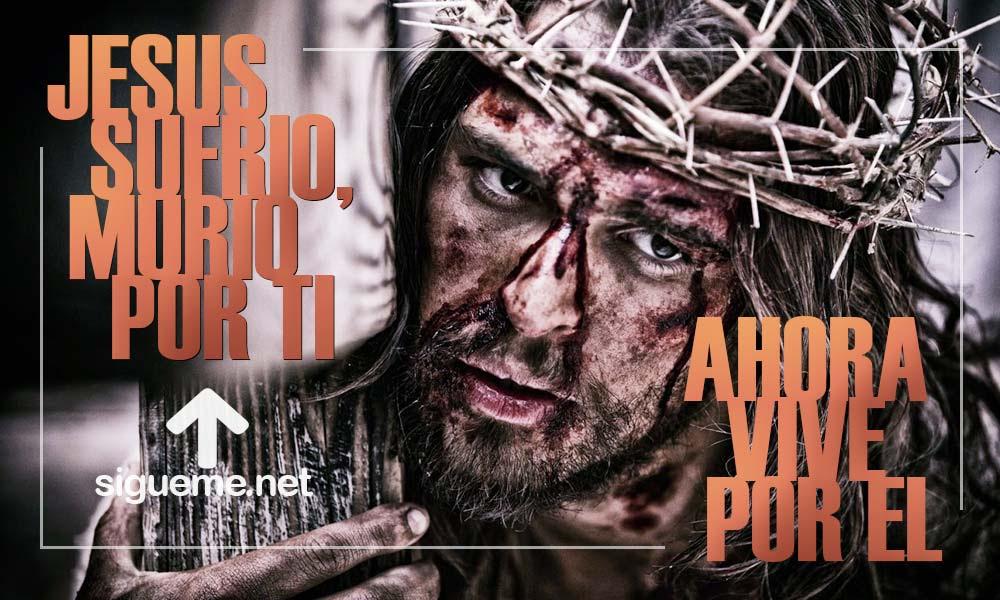 Frases De Semana Santa 2018 Frases Biblicas De La Pascua Cristiana