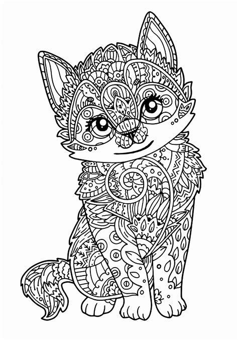 beautiful image  coloring pages  cats