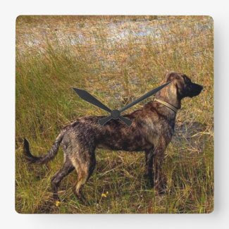 Plott Hound Hunting Dog Wall Clock Wallclocks