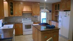 High Quality Kitchen Cabinet Painting | cabinets ...