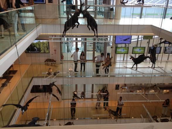 Inaugurato il Muse, museo delle scienze di Trento