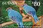Resplendent Quetzal Pharomachrus mocinno